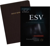 ESV Cambridge Clarion Reference Bible - Brown Calfskin Leather
