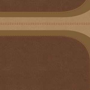 Rvr 1960 Spanish Rainbow Study Full Color Brown Tan Leathertouch